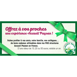 Bon Cadeau 20 euros